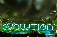 слоты без регистрации Evolution