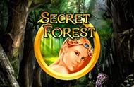 Новая игра Таинственный лес онлайн