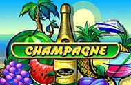 Champagne - новые онлайн слоты